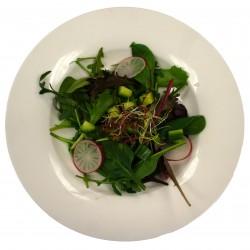 Frisse salade met dressing